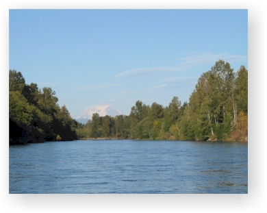 The Cowlitz River, Toledo Washington