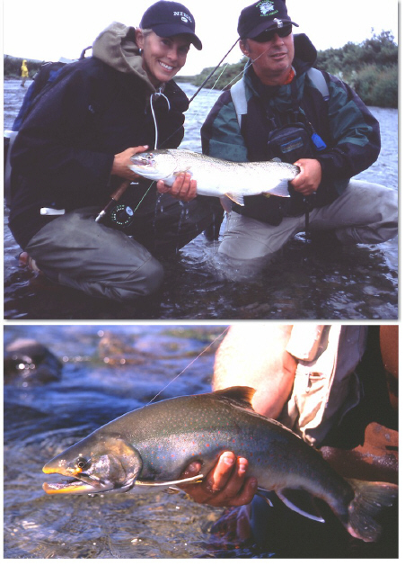 Big Alaskan Rainbow, Arctic Char
